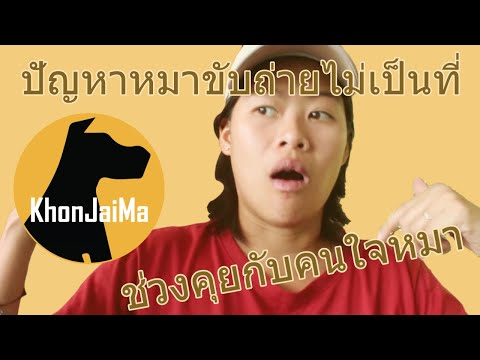 ช่วงคุยกับ Khon Jai Ma   ปัญหาหมาขับถ่ายไม่เป็นที่ กัดทำลายข้าวของ และกระโจนใส่คน