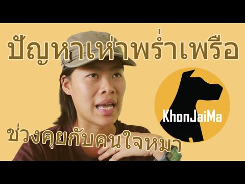 ช่วงคุยกับ Khon Jai Ma | ปัญหาเห่าพร่ำเพรือ แถมสู้เจ้าของอีก