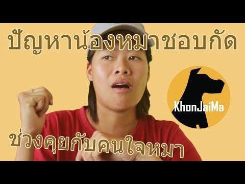 ช่วงคุยกับ Khon Jai Ma | ปัญหาน้องหมาชอบกัด และกระชากเวลาจูงเดิน