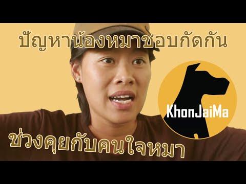 ช่วงคุยกับ Khon Jai Ma | ปัญหาน้องหมาชอบกัดกัน และหวงเจ้าของ