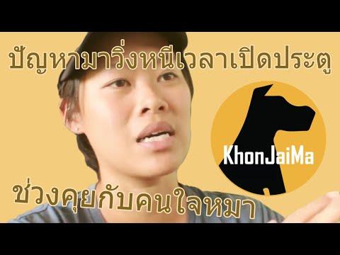 ช่วงคุยกับ Khon Jai Ma | ปัญหามาวิ่งหนีเวลาเปิดประตู/กระโจนใส่/แย่งเจ้าของ