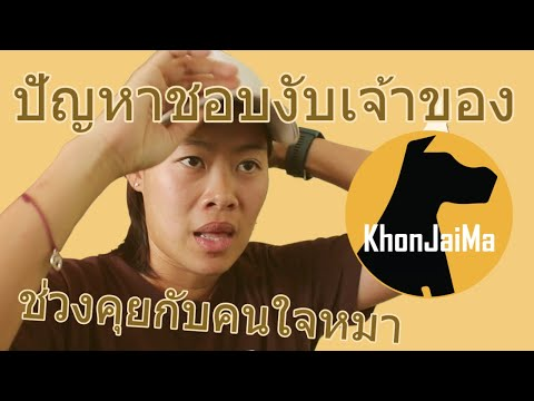 ช่วงคุยกับ Khon Jai Ma   ปัญหาชอบงับเจ้าของ