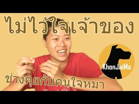 ช่วงคุยกับ Khon Jai Ma | ปัญหาน้องหมาหวงเนื้อหวงตัว ไม่ไว้ใจเจ้าของ