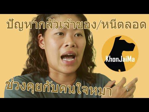 ช่วงคุยกับ Khon Jai Ma | ปัญหากลัวเจ้าของ/แตะตัวไม่ได้/หนีตลอด