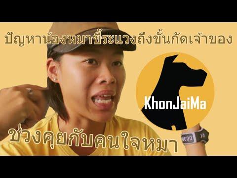 ช่วงคุยกับ Khon Jai Ma | ปัญหาน้องหมาขี้ระแวงถึงขั้นกัดเจ้าของ