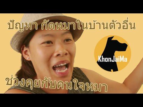 ช่วงคุยกับ Khon Jai Ma   ปัญหา กัดหมาในบ้านตัวอื่น