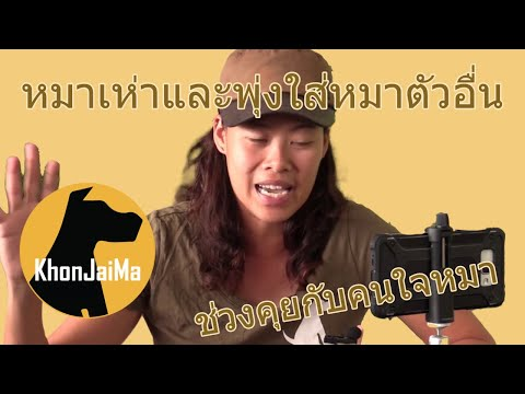 ช่วงคุยกับ Khon Jai Ma   ปัญหาหมาเห่า และพุ่งใส่หมาตัวอื่น