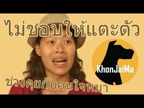 ช่วงคุยกับ Khon Jai Ma | ปัญหาหมาน้องหมาไม่ชอบให้แตะตัว
