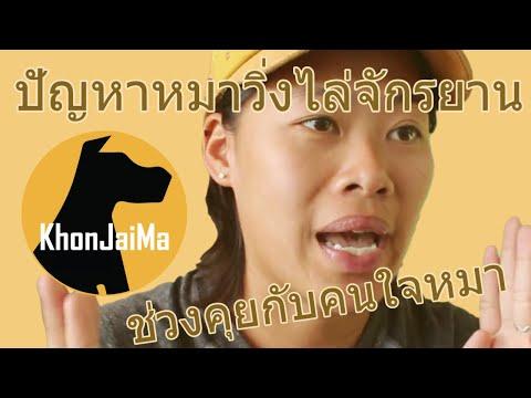 ช่วงคุยกับ Khon Jai Ma | ปัญหาหมาวิ่งไล่จักรยาน