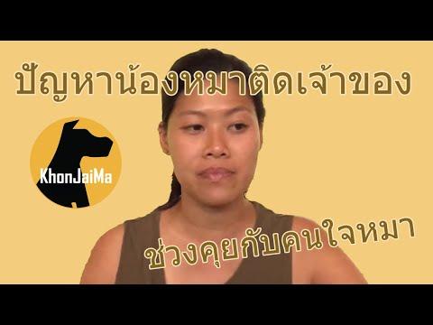ช่วงคุยกับ Khon Jai Ma   ปัญหาน้องหมาติดเจ้าของ (ลูกสุนัข 2 เดือน)