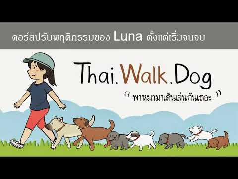 Khon Jai Ma | ลูน่าเป็นหมาขี้กลัว