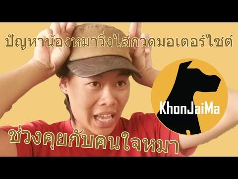 ช่วงคุยกับ Khon Jai Ma | ปัญหาน้องหมาวิ่งไล่กวดมอเตอร์ไซต์ กระโดดใส่ประตู