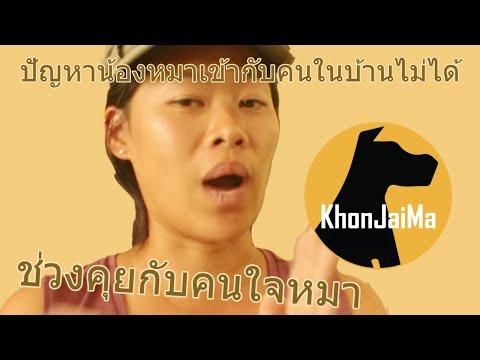 ช่วงคุยกับ Khon Jai Ma   ปัญหาน้องหมาเข้ากับคนในบ้านไม่ได้